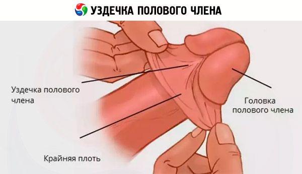 teknikker til at helbrede for tidlig ejakulation